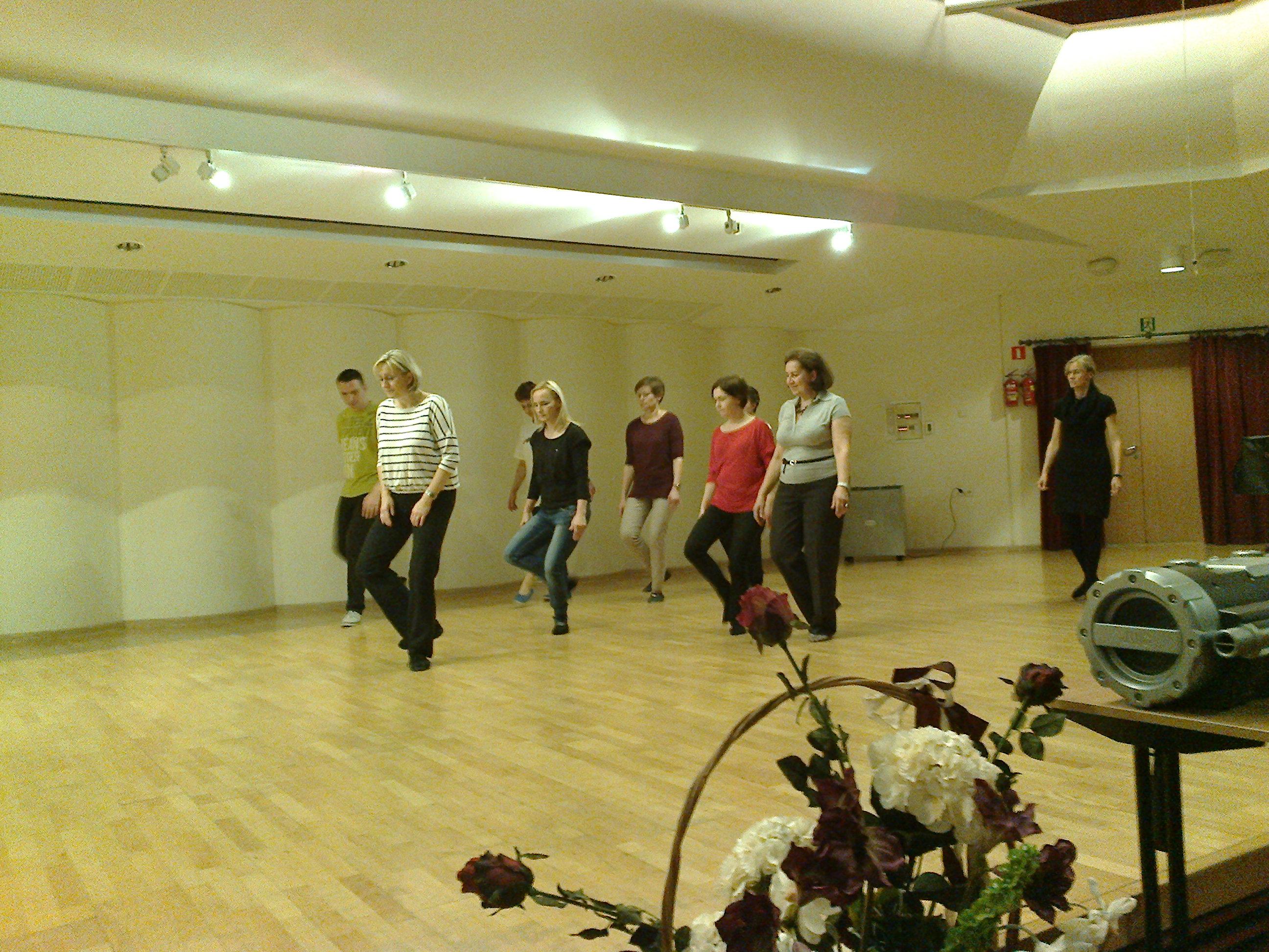 Taniec historyczny i muzyka dawna 2014 (15)